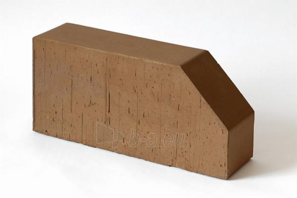 Keraminė pilnavidurė figūrinė apdailos plyta Lode 'Brunis F6' 250x120x65 Paveikslėlis 1 iš 1 310820036305