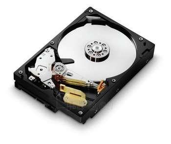 DESKSTAR 7K1000.C 500GB 3,5'' SATA2 7.2K Paveikslėlis 1 iš 1 250255510077