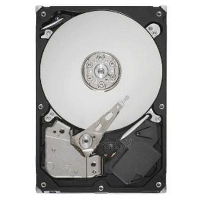 HDD SEA MOMENTUS 500GB 2.5'' SATA2 7.2K 16MB Paveikslėlis 1 iš 1 250255510012