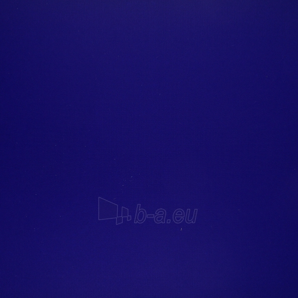 Kiliminė danga Beaulieu Real PIN UP 055/EVENT COARD FOAM 5055, mėlyna Paveikslėlis 1 iš 1 237722000177