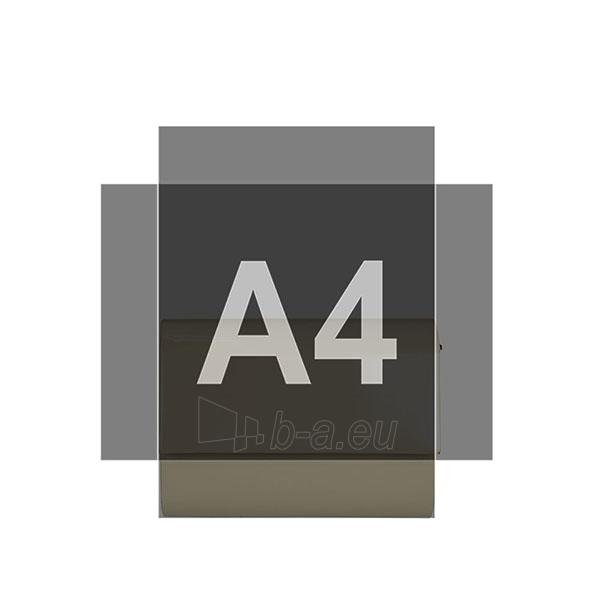 Klasikinė delninukė DL418 Paveikslėlis 3 iš 3 310820004991