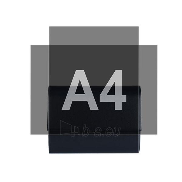 Klasikinė delninukė DL421 Paveikslėlis 3 iš 3 310820004987