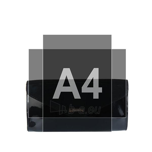 Klasikinė delninukė DL430 Paveikslėlis 3 iš 3 310820004270