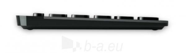 Klaviatūra Logitech Wireless Illuminated K810 Paveikslėlis 2 iš 3 250255701003