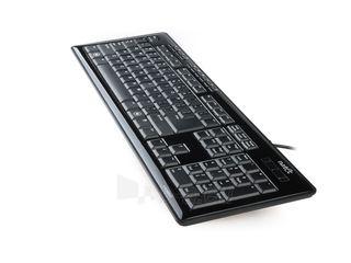 Klaviatūra Natec Medusa 2 USB, Juoda Paveikslėlis 2 iš 4 250255701011