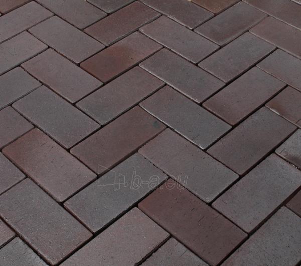 Klinkerinės grindinio trinkelės 'ABC klinker' altfarben-bunt-geflammt 200x100x52 Paveikslėlis 1 iš 1 238910000083