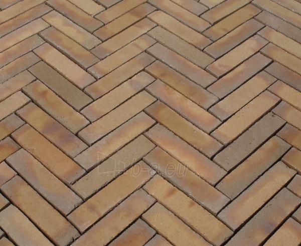Klinkerinės grindinio trinkelės Penter 'Baltrum' 210x50x70 Paveikslėlis 1 iš 1 238910000072