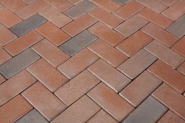 Klinkerinės grindinio trinkelės Penter ' Braunbunt' 200x100x45 Paveikslėlis 1 iš 1 238910000095