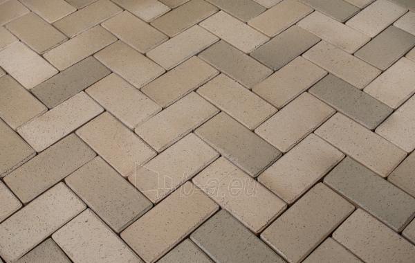 Klinkerinės grindinio trinkelės 'Alt Schwerin' 200x100x52 Paveikslėlis 1 iš 1 238910000011