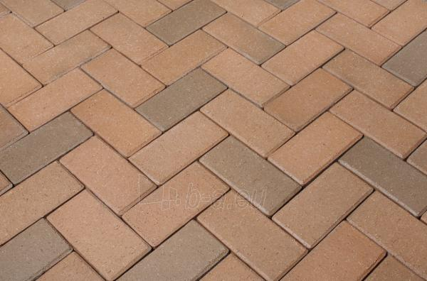 Klinkerinės grindinio trinkelės Penter 'Penter Gelbbunt' 200x100x52 Paveikslėlis 1 iš 1 238910000014