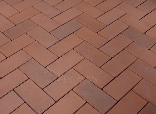 Klinkerinės grindinio trinkelės 'Dresden' 240x118x52 Paveikslėlis 1 iš 1 238910000002