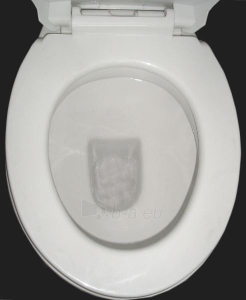 Toilet GRA-017P Paveikslėlis 4 iš 6 270713000408