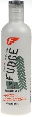 Fudge Daily Mint Conditioner Cosmetic 300ml Paveikslėlis 1 iš 1 250830900005