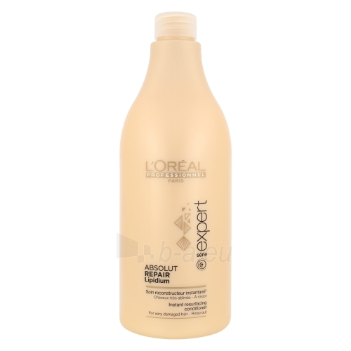 L´Oreal Paris Expert Absolut Repair Lipidium Conditioner Cosmetic 750ml Paveikslėlis 1 iš 1 250830900555