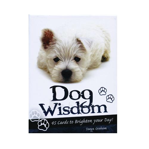 Kortos Inspirational Dog Wisdom Paveikslėlis 1 iš 7 310820142675