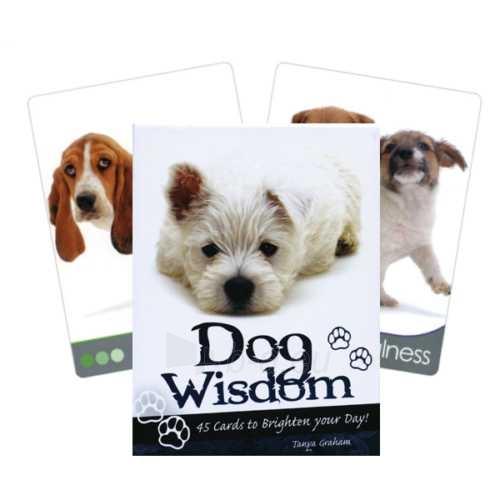 Kortos Inspirational Dog Wisdom Paveikslėlis 6 iš 7 310820142675
