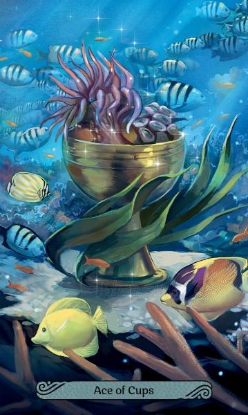 Kortos Mermaid Taro Paveikslėlis 8 iš 8 310820194532