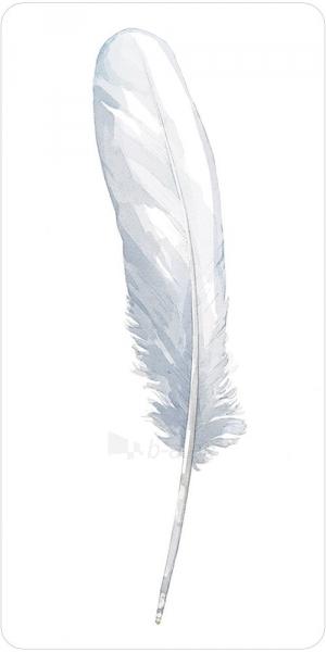 Kortos Oracle Divine Feather Paveikslėlis 10 iš 11 310820173447
