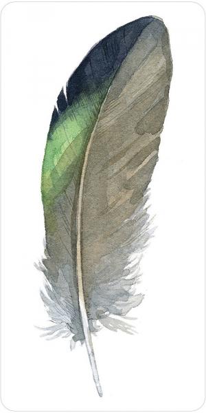 Kortos Oracle Divine Feather Paveikslėlis 9 iš 11 310820173447