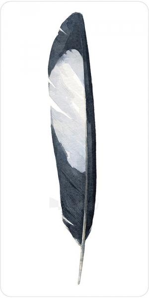 Kortos Oracle Divine Feather Paveikslėlis 8 iš 11 310820173447