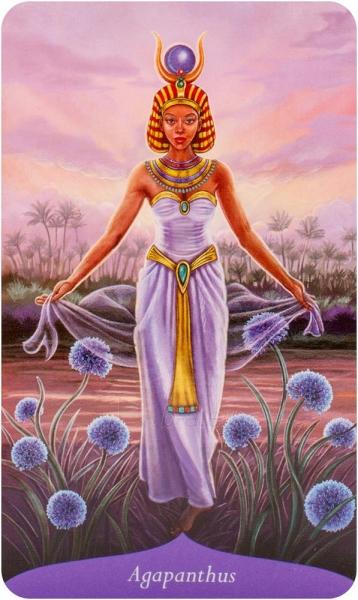 Kortos Oracle Kortos Magic Of Flowers Paveikslėlis 3 iš 8 310820142857