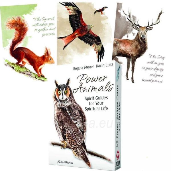 Kortos Power Animals Paveikslėlis 1 iš 6 310820142766