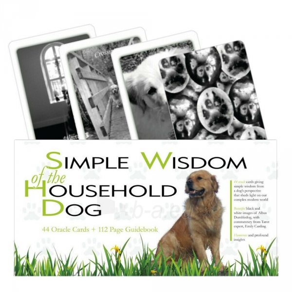 Kortos Simple Wisdom of the Household Dog Paveikslėlis 7 iš 7 310820217271
