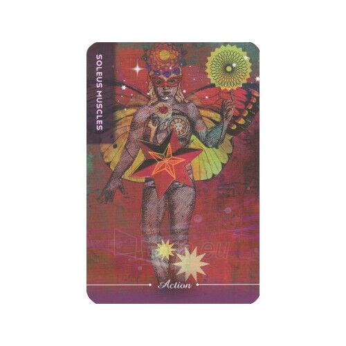 Kortos Taro Body Cards Paveikslėlis 9 iš 10 310820217253
