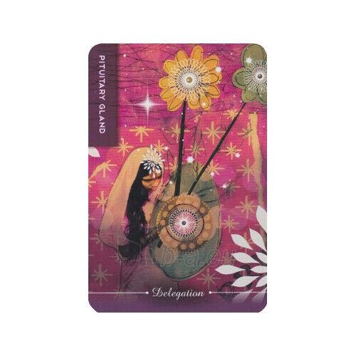 Kortos Taro Body Cards Paveikslėlis 8 iš 10 310820217253