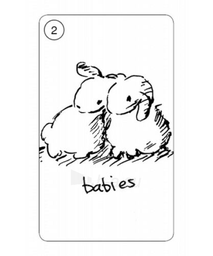 Kortos Taro Carrot Cards Paveikslėlis 6 iš 8 310820217250