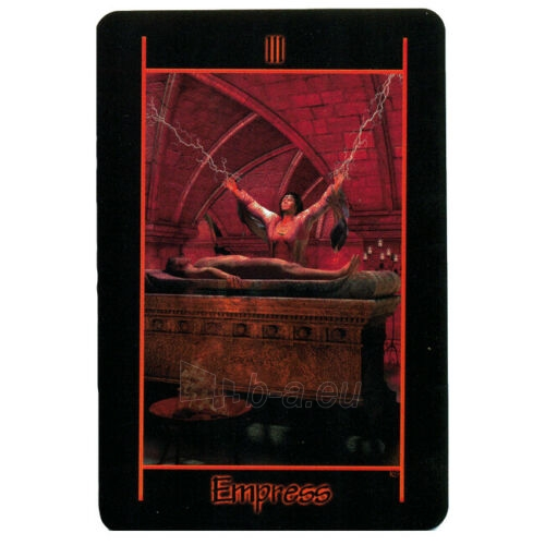 Kortos Taro Tarot of the Night Paveikslėlis 4 iš 8 310820217255