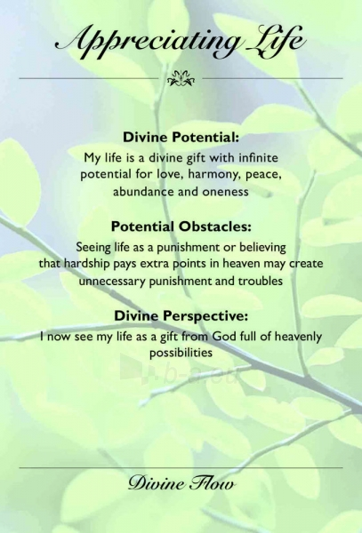 Kortos The Divine Light Flow Kortos Paveikslėlis 5 iš 7 310820142762