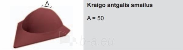 Kraigo antgalis smailus Ruukki® (plastikinis) Paveikslėlis 1 iš 1 310820026907