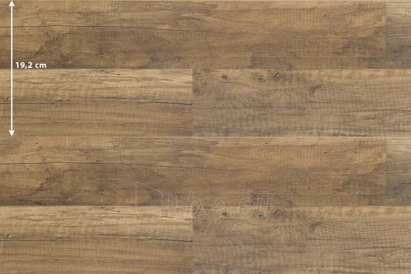 Laminate flooring Krono Original FAMILY, 1285x192x7, 32kl, oak Castle  Paveikslėlis 2 iš 2 237725000274