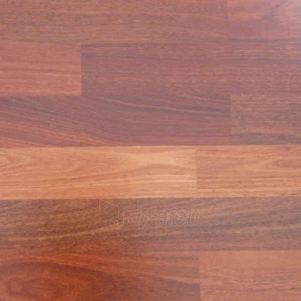 Laminate flooring Balterio DK 270 VITALITY DIPLOMAT 1261x189x8 32 kl. beech Paveikslėlis 1 iš 1 237725000128