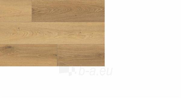 Laminuotos grindys MEGAFLOOR MF4579, Ąžuolas Trilogy natūralus (AC4/32) Paveikslėlis 1 iš 2 310820114753