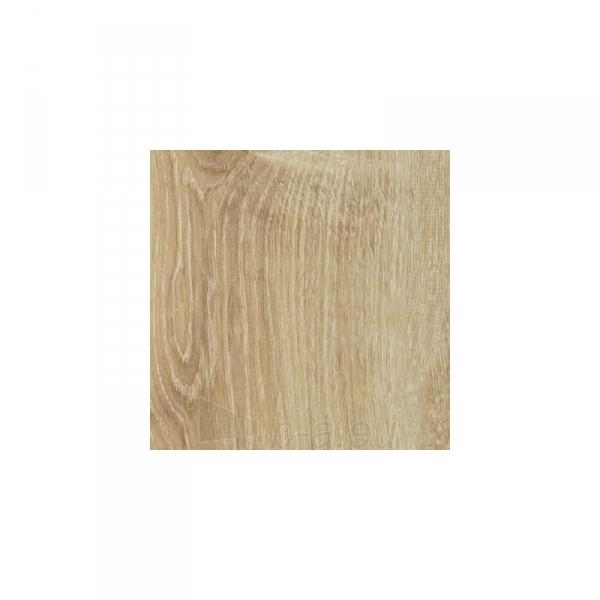 Laminate flooring SOLID PLUS 621 12mm 33kl. Paveikslėlis 1 iš 1 310820050344