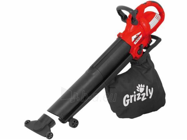 Lapų pūstuvas/siurblys 3000W Grizzly ELS 3017 E Paveikslėlis 1 iš 4 268904000045