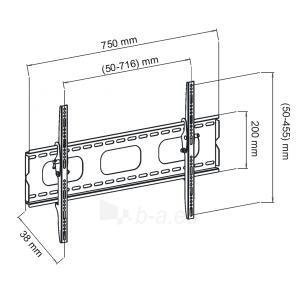 LCD monitoriaus laikiklis ART Holder AR-18 LCD TV | Black | 30-50 60kg | VESA Paveikslėlis 2 iš 3 250226200545