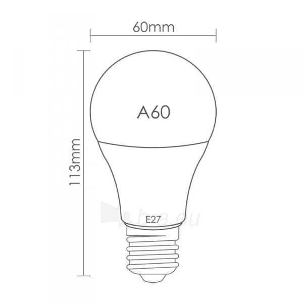 LED lemputė Whitenergy | E27 | 6 SMD 2835 | 5.5W |230V| pienas|šalta balta | A60 Paveikslėlis 6 iš 6 310820049368