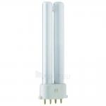 Lempa kompaktinė, 2G7 11W, 4000K, 4pin, PL-S 4P Philips Paveikslėlis 1 iš 1 224123000160