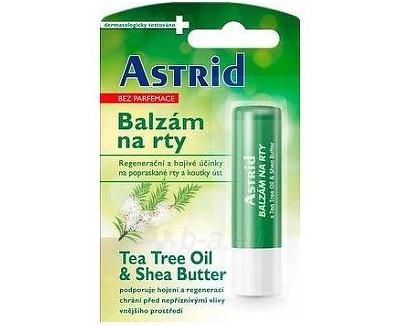 Lūpų balzamas Astrid Tea Tree Oil & Shea Butter Paveikslėlis 1 iš 1 310820049060