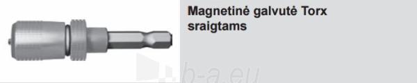Magnetinė galvutė Torx sraigtams (1 vnt. + 5 antgaliai) Paveikslėlis 1 iš 1 310820026919