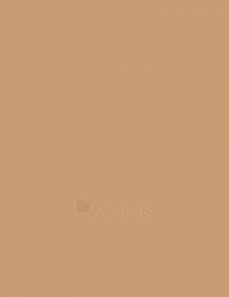 Makiažo pagrindas Revlon Colorstay Makeup Normal Dry Skin 30ml True Beige Paveikslėlis 1 iš 2 250873100508