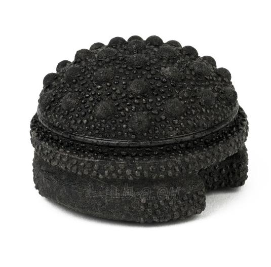 Masažuoklis Blackroll® TWISTER 6,8 cm Paveikslėlis 1 iš 1 310820217795