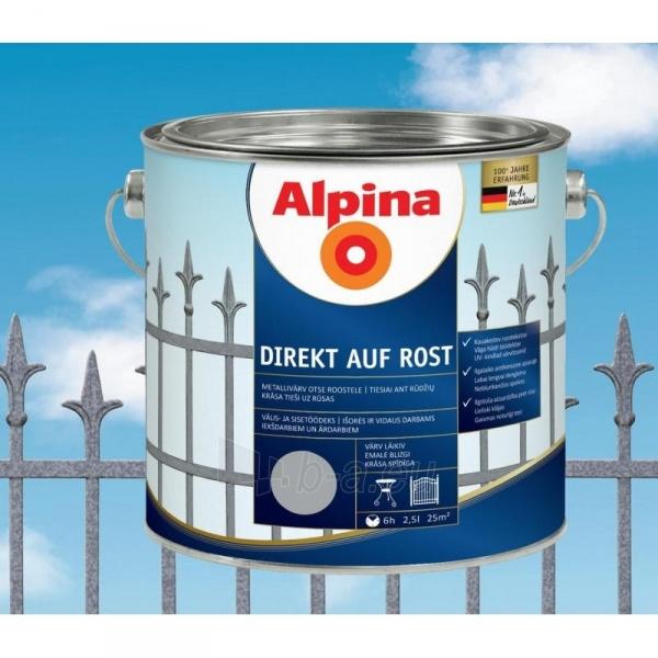 Metalo dažai Direkt auf Rost bordo RAL3005 2.5 l Paveikslėlis 1 iš 1 310820016445