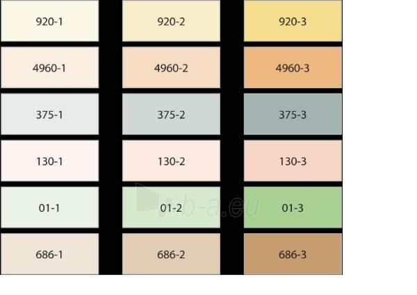 Mineraliniai pigmentai Sakret 130-2 0,2kg raudona Paveikslėlis 1 iš 2 236760100184