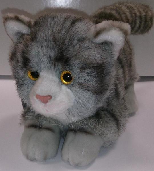Kačiukas - 20cm 411A Paveikslėlis 1 iš 1 250710400304