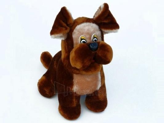 Dog Amsiukas AM-1 32 x 24 x 25 cm Paveikslėlis 1 iš 1 250710400013