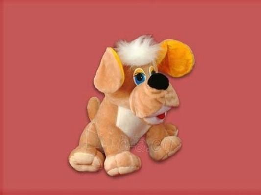 Šuo Toška mažas TM-1 40 x 43 x 38 cm Paveikslėlis 1 iš 2 250710400001